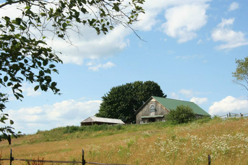 spring creek barn and grassy hill